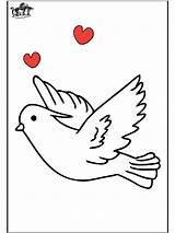 Pigeon Coloring Pigeons Printable Dessin Preschool Voyageur Coloriage Imprimer Animals Animal Library Clipart sketch template