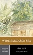 Book Summary: Wide Sargasso Sea, By Jean Rhys ...