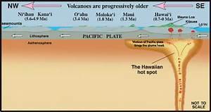 Plate Tectonics And The Hawaiian Hot Spot