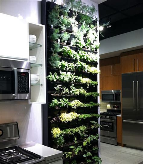 herb garden   kitchen pictures   images
