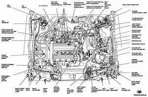 1995 Ford Escort Cooling System Diagrams