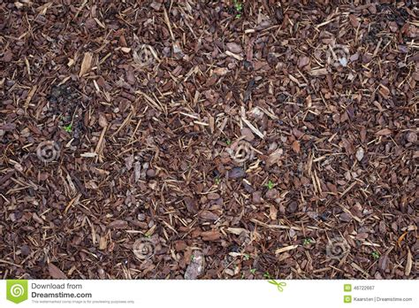 ground bark mulch bark mulch stock image image of background ground nature 46722667