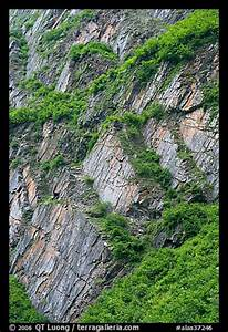 Picture/Photo: Vegetation and rocks on canyon walls ...