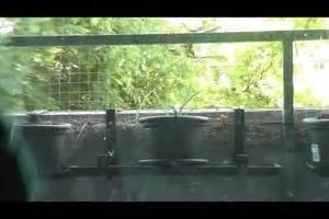 Wie Putze Ich Fenster Optimal : wie putze ich fenster richtig so geht 39 s streifenfrei ohne chemie basteln blogger ~ Markanthonyermac.com Haus und Dekorationen