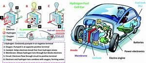 Carbon Dioxide Bio