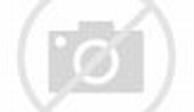 High Kicks & High Hair : World Irish Dancing Championships ...