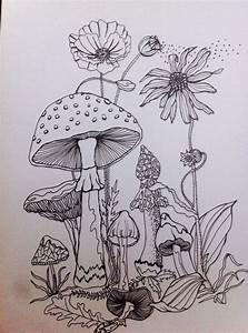 Mushroom Forest Drawing | www.imgkid.com - The Image Kid ...