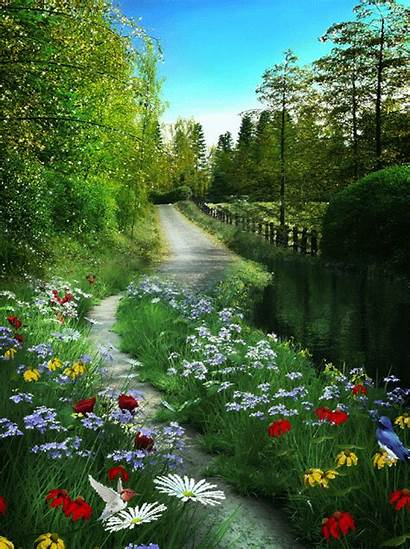 Landscapes Spring Nature Flowers Paisajes Path Band
