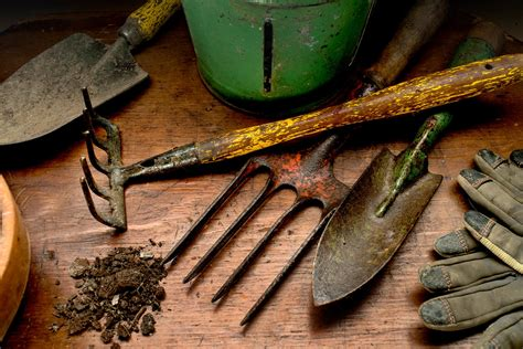 The Best Garden Tools To Give As Gifts For Mother's Day Money