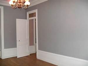 idee couleur peinture salon 12 indogate peinture gris With idee couleur de chambre