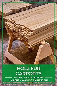 Welches Holz Für Carport : holz carport modern welches ist das richtige holz f r ihren carport buche douglasie fichte ~ A.2002-acura-tl-radio.info Haus und Dekorationen
