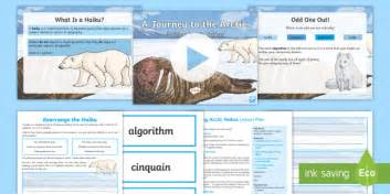A Journey To The Arctic Writing Arctic Haikus Lesson Pack Digital