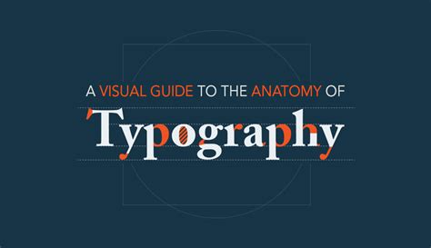 type anatomy a visual guide to the parts of letters visual learning center by visme