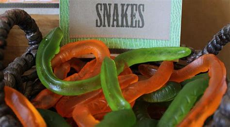 reptile party labels instant  editable