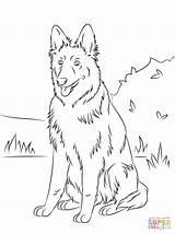 Coloring Shepherd German Puppy Sitting sketch template