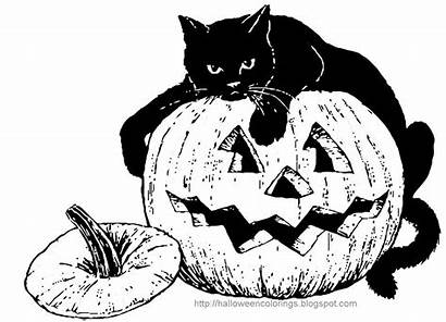 Halloween Coloring Cat Pumpkin Pages Colorings Printable