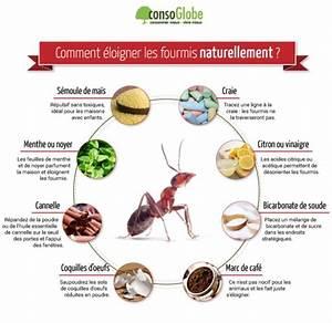 les 25 meilleures idees de la categorie fourmis sur With maison de l ecologie 13 8 solutions naturelles pour chasser les fourmis