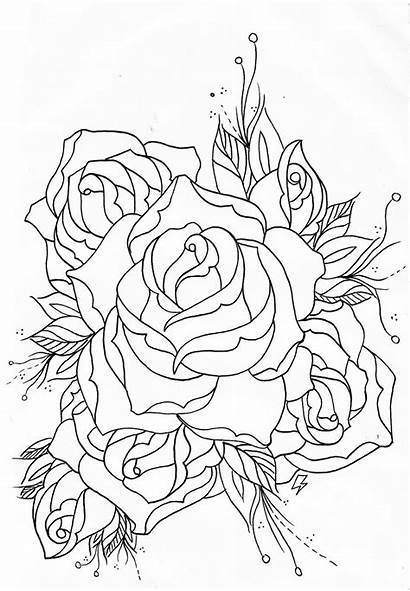 Outline Rose Tattoo Drawing Outlines Tattoos Coloring