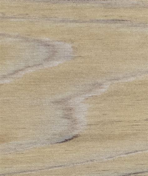 arborcoat translucent barrydowne paint