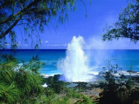 kauai my favorite places to hawaii one of the most best vacation spot in the world
