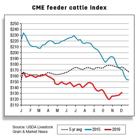 cme feeder cattle cattle prices declined in october progressive cattleman