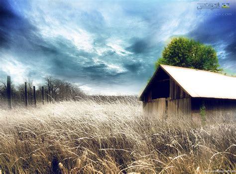 عکس طبیعت  عکس جنگل، دانلود عکس ، عکس جدید، عکس کوه، عکس