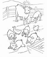 Farm Coloring Animals Pig Pages Farmer Colour Animal Barn Printable Template Crew Cut Overalls Popular Getcoloringpages Templates Coloringhome sketch template