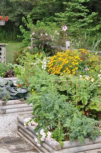Gravel Garden Enhance