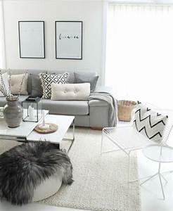 les 25 meilleures idees de la categorie salon gris et With awesome quelle couleur pour le salon 5 le positionnement des couleurs