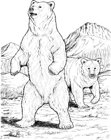 Click to see printable version of Two Black Bears Coloring page | Bear coloring pages, Bear