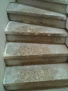 charmant beton cire pour escalier exterieur 4 recouvrir With beton cire pour escalier exterieur
