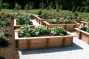 why you should have raised veggie beds sustainable living With vegetable garden design raised beds