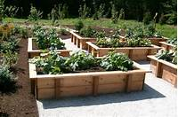 raised vegetable garden Why you should have raised veggie beds! | Sustainable Living