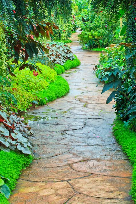 photos of garden paths 35 gorgeous garden pathways to tiptoe on garden lovers club