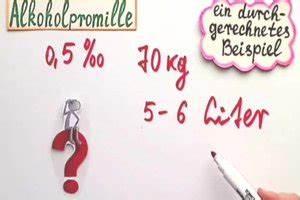 Promille Berechnen : prozent und promille die matheexpertin erkl rt den unterschied ~ Themetempest.com Abrechnung