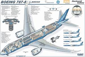 A Schematic Drawing Of A Boeing 787 Dreamliner Passenger