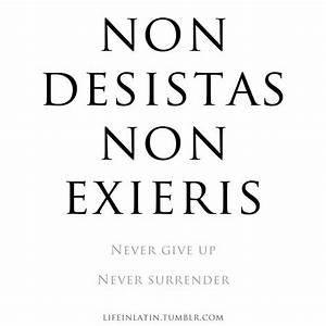 In Latin: Non D... Roman Quotable Quotes