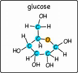Difference between xylose and glucose | Difference Between  Glucose