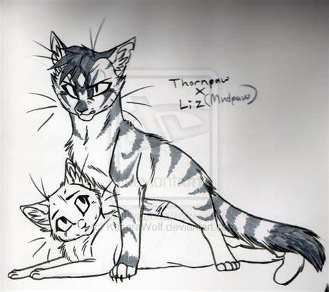 thornxliz sketch  kasarawolf  deviantart