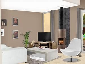 couleur pour un salon moderne meilleures images d With couleur peinture moderne pour salon
