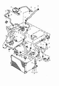 28 2001 Vw Beetle Cooling System Diagram Wiring Diagram