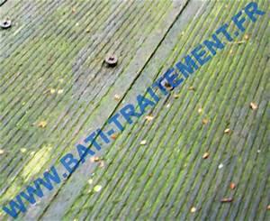 Anti Mousse Terrasse Bois : vente anti mousse hydrofuge lasure nettoyant pulv risateur ~ Melissatoandfro.com Idées de Décoration