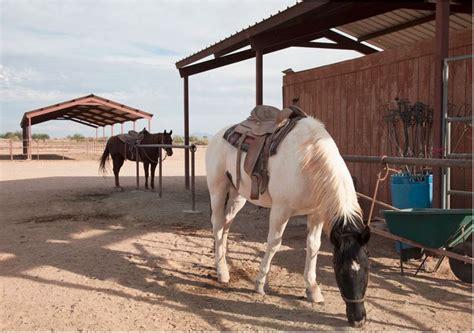 phoenix riding horseback equestrian center trail