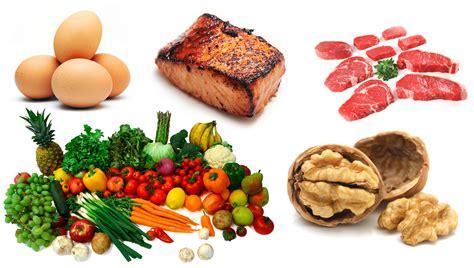 cuisine diet evolution the basis for understanding human nutrition