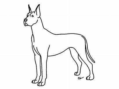 Coloring Pages Dog Dane Printable Lps Clip