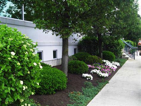 cincinnati landscaping big  lawn landscape