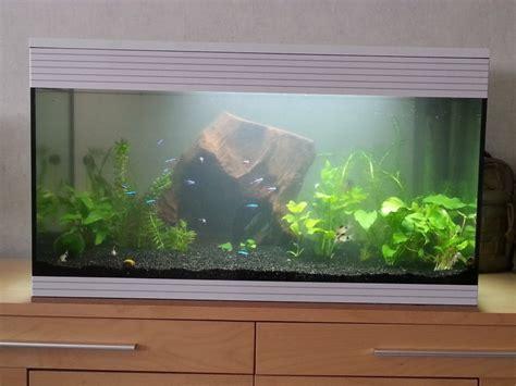 choix population de poisson pour un aquarium de 107 litres