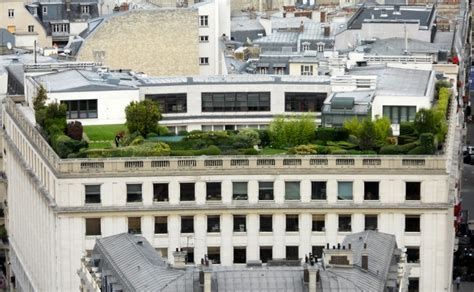 arbusti da terrazzo come scegliere alberi e arbusti per il giardino pensile
