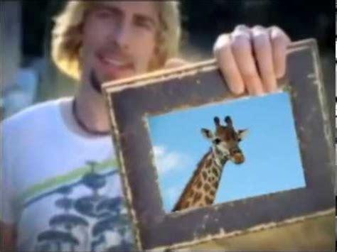 Look At This Giraffe  Original! Youtube