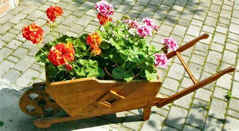fiori di legno fai da te carriola in legno fai da te fioriera come costruirla con